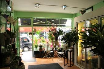 <p>Patricia&#039;s Flower Shop - <a href='/triptoids/patricias-flowershop'>Click here for more information</a></p>