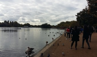 <p>Hyde Park & Green Park - <a href='/journals/hyde-park-and-green-park'>Click here for more information</a></p>