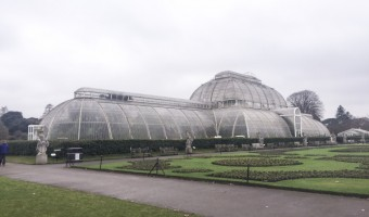 <p>Kew Gardens  - <a href='/journals/kew-gardens'>Click here for more information</a></p>