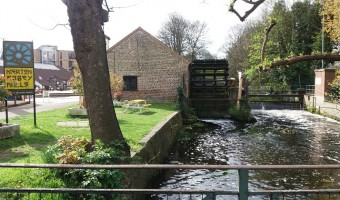 <p>The Wandle Trail - <a href='/journals/the-wandle-trail'>Click here for more information</a></p>