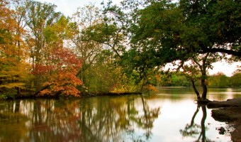 <p>Rural Retreats in Greater London - <a href='/articles/rural-retreats'>Click here for more information</a></p>