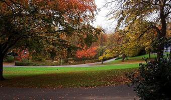 <p>Telegraph Hill Park - <a href='/triptoids/telegraph-hill-park'>Click here for more information</a></p>