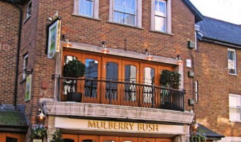 The Mulberry Bush Pub